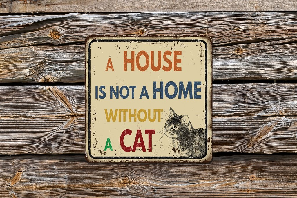A house is not a home without a CAT  metal sign