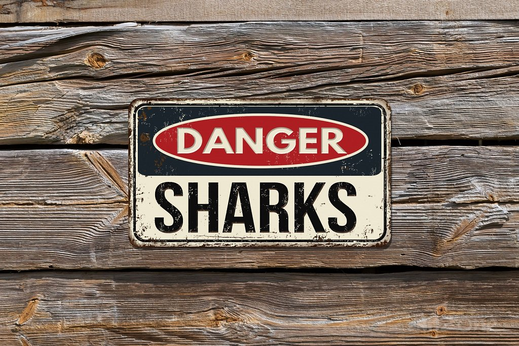 DANGER SHARKS sign
