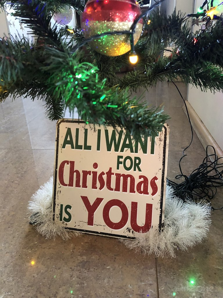 All want for Christmas is YOU