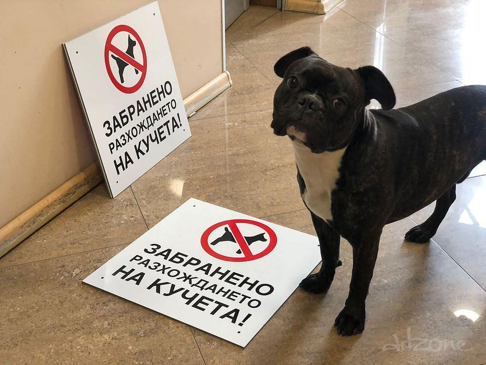 Табела Забранено Разхождането на Кучета